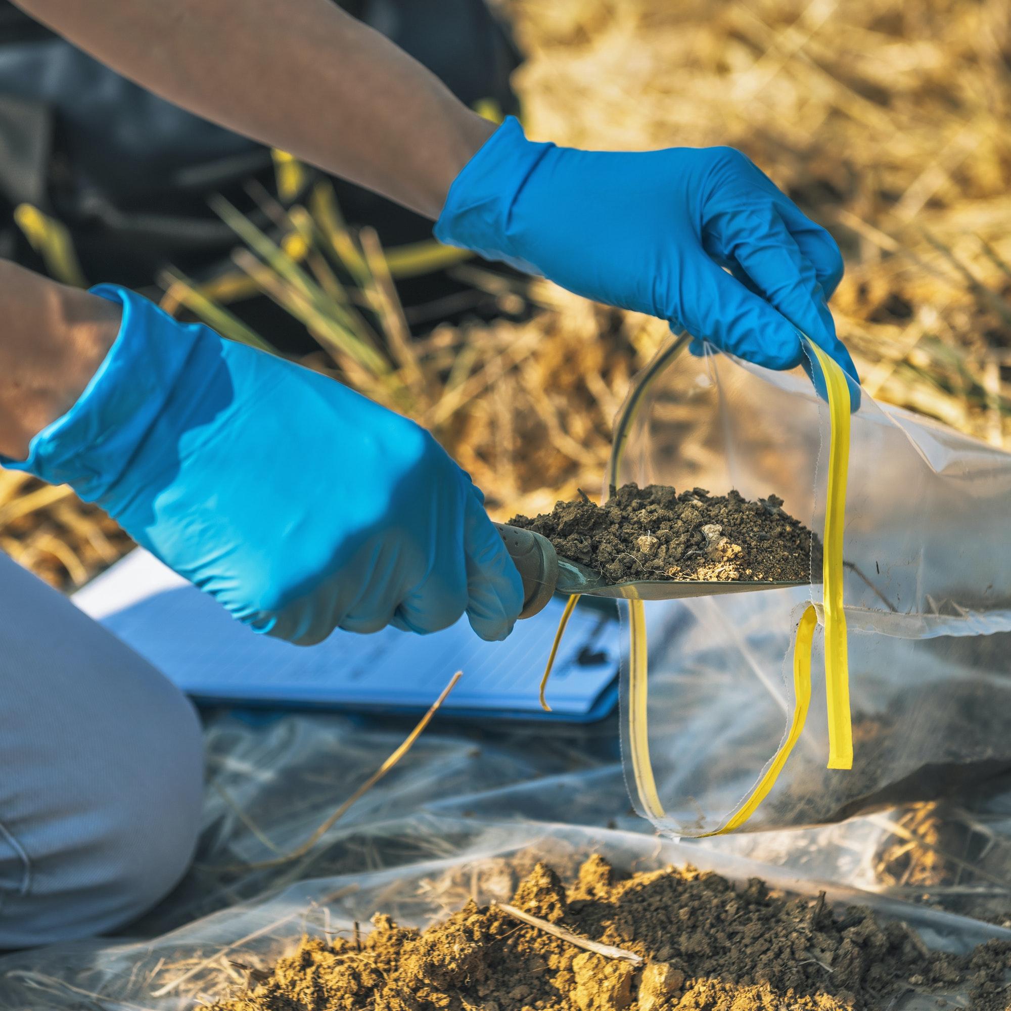 Soil Testing. Agronomy Inspector Taking Soil Sample